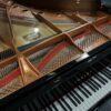 New Yamaha C6X Grand Piano