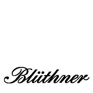 bluthner-logo