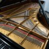 Steinway Model D polished black