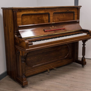 Steinway Vertegrand in rosewood whole piano