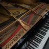 Yamaha C6 Grand Piano Interior